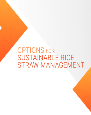 https://sites.google.com/a/irri.org/dev-rice-straw/rice-straw-fact-sheets